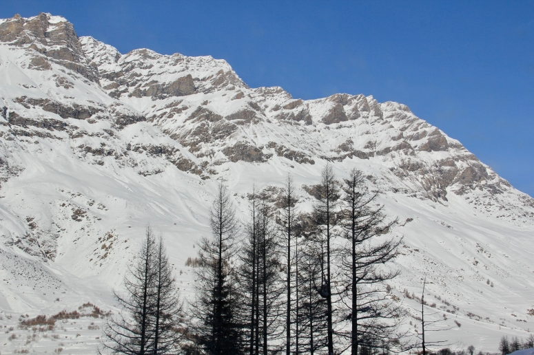 Alps - 15