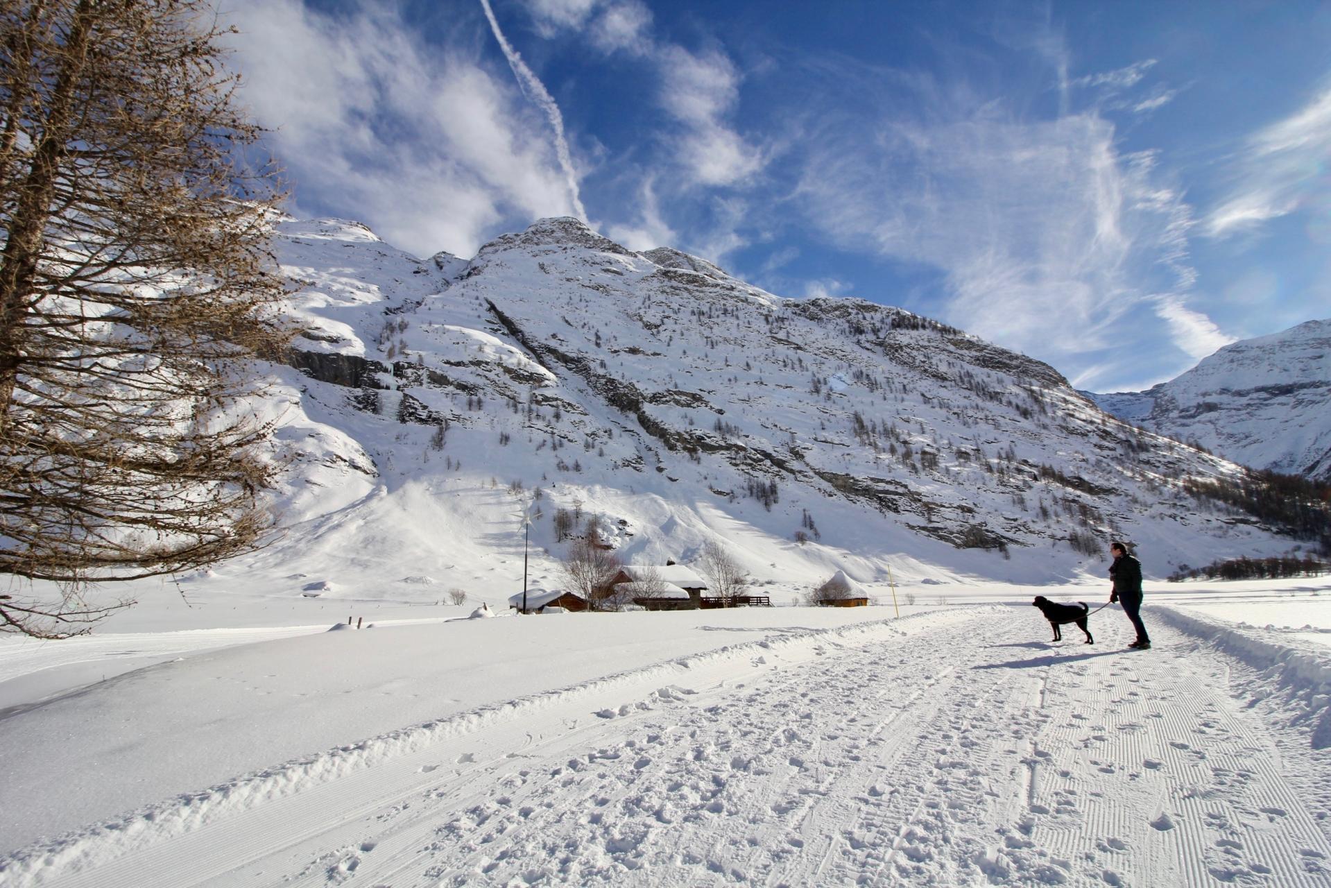 Alps - 70