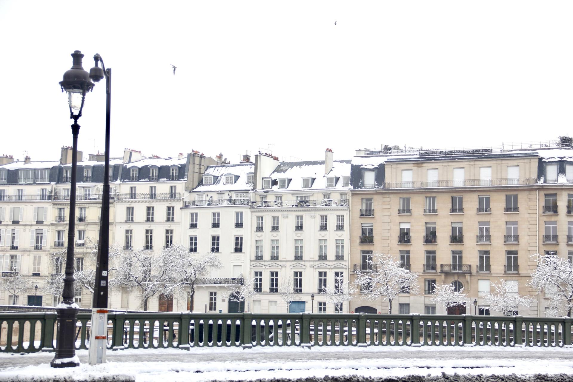 Snowy Paris - 10