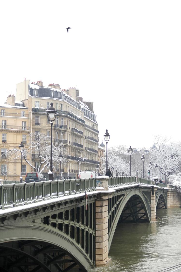 Snowy Paris - 11