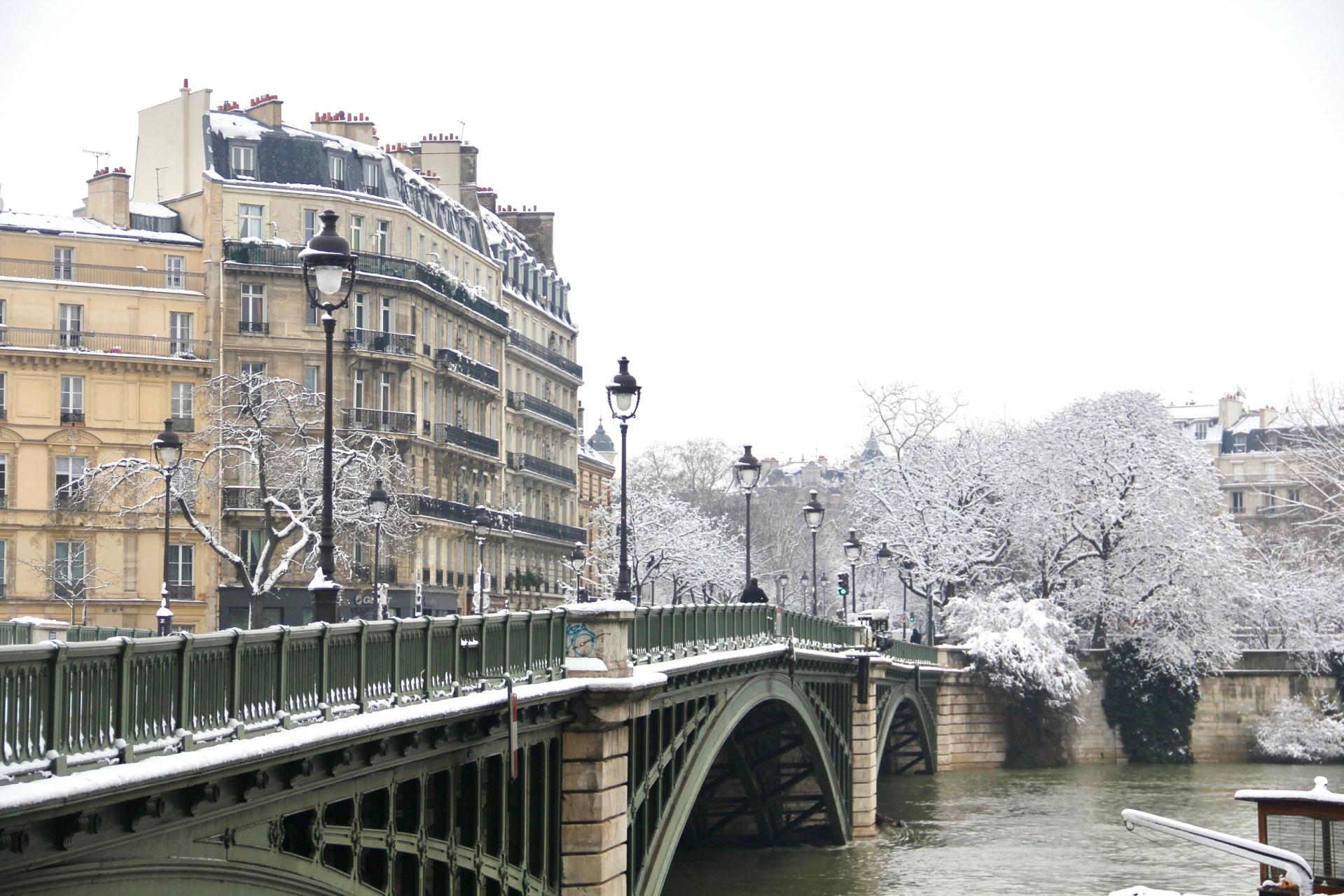 Snowy Paris - 12