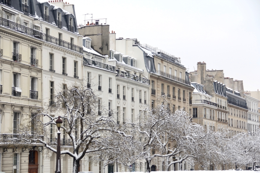 Snowy Paris - 14