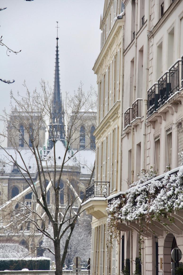 Snowy Paris - 16