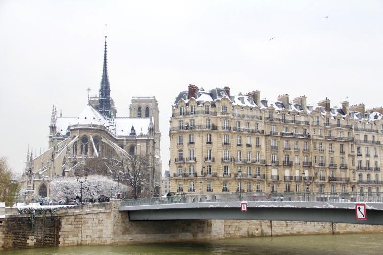 Snowy Paris - 20