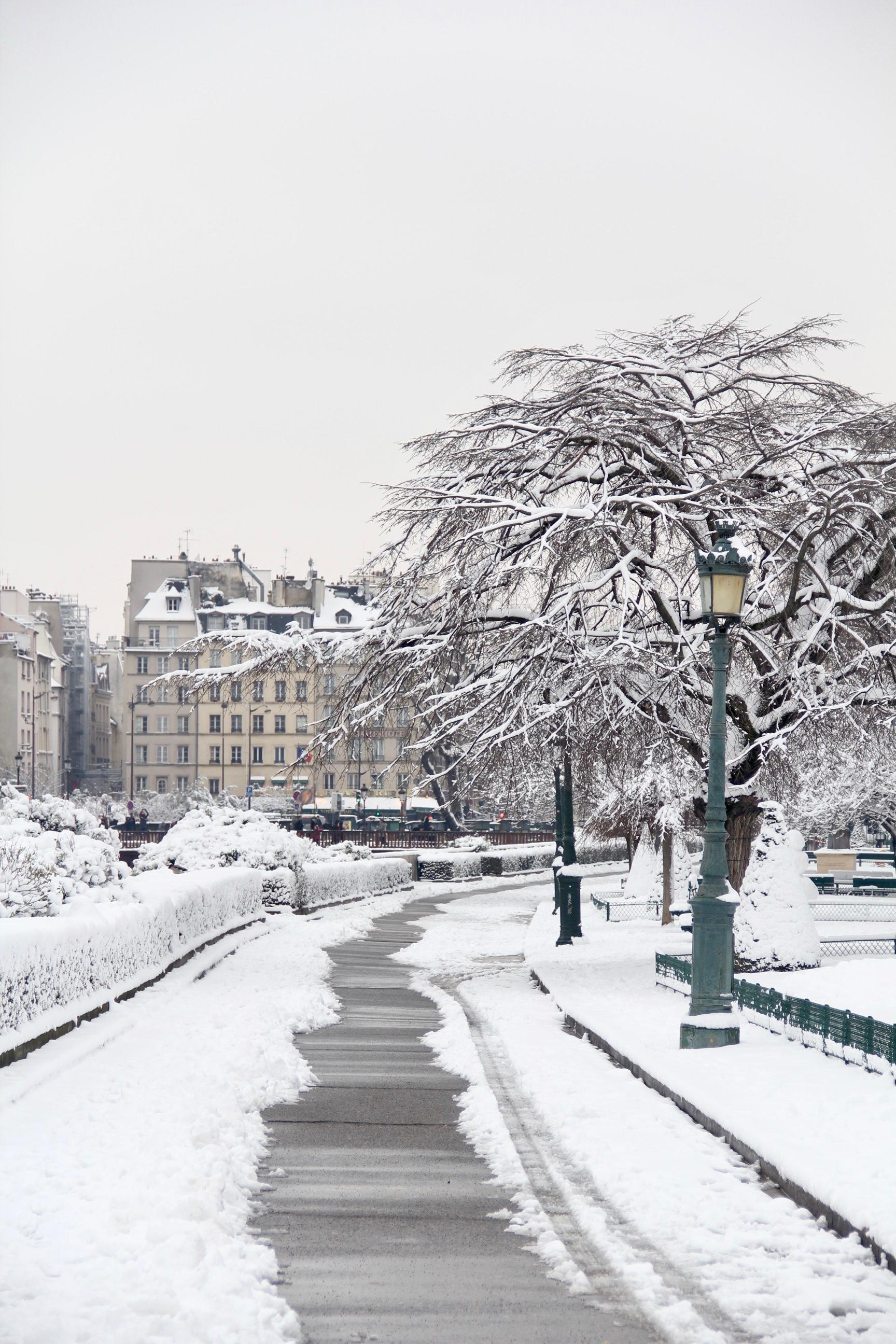 Snowy Paris - 30
