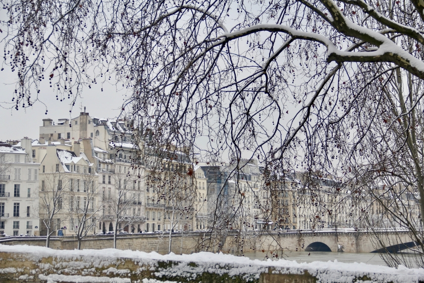 Snowy Paris - 34