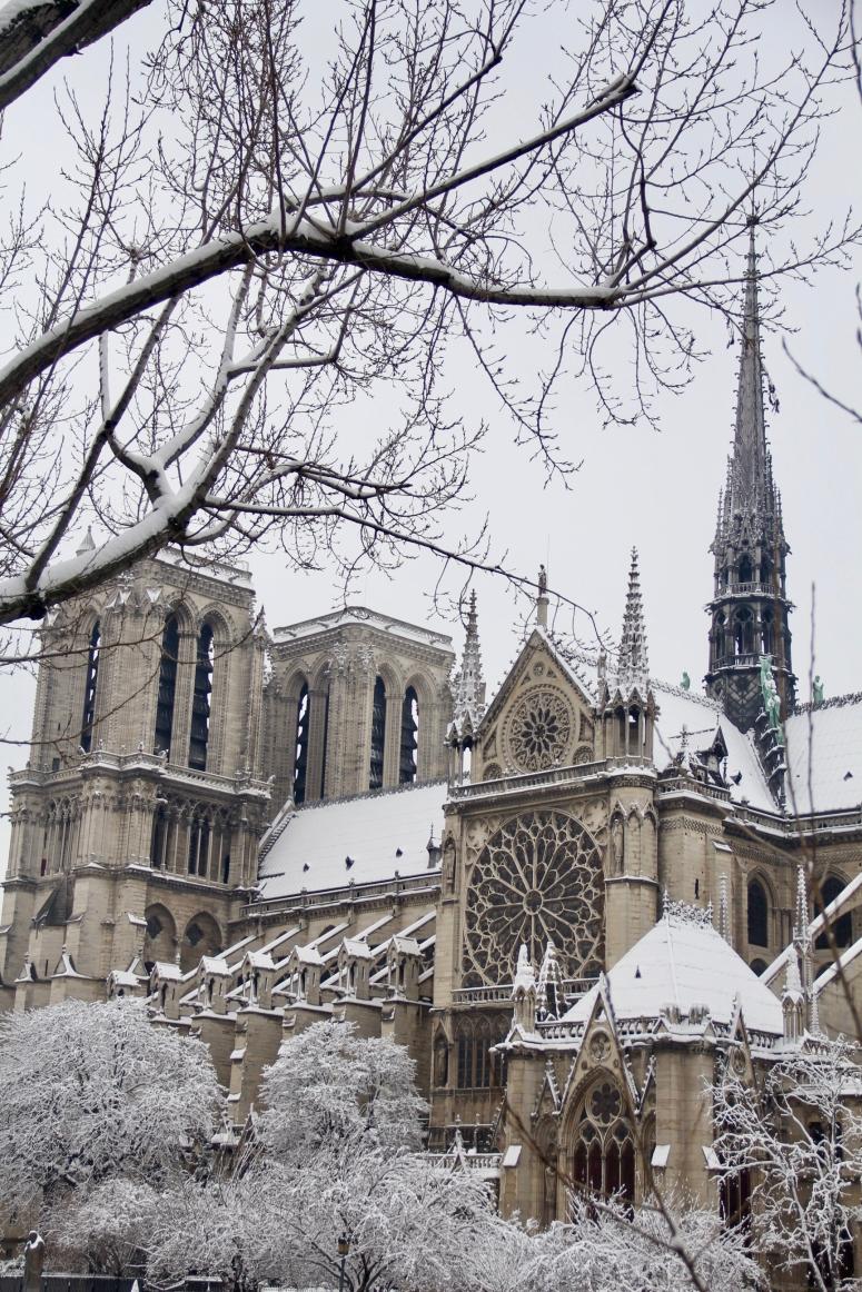 Snowy Paris - 37