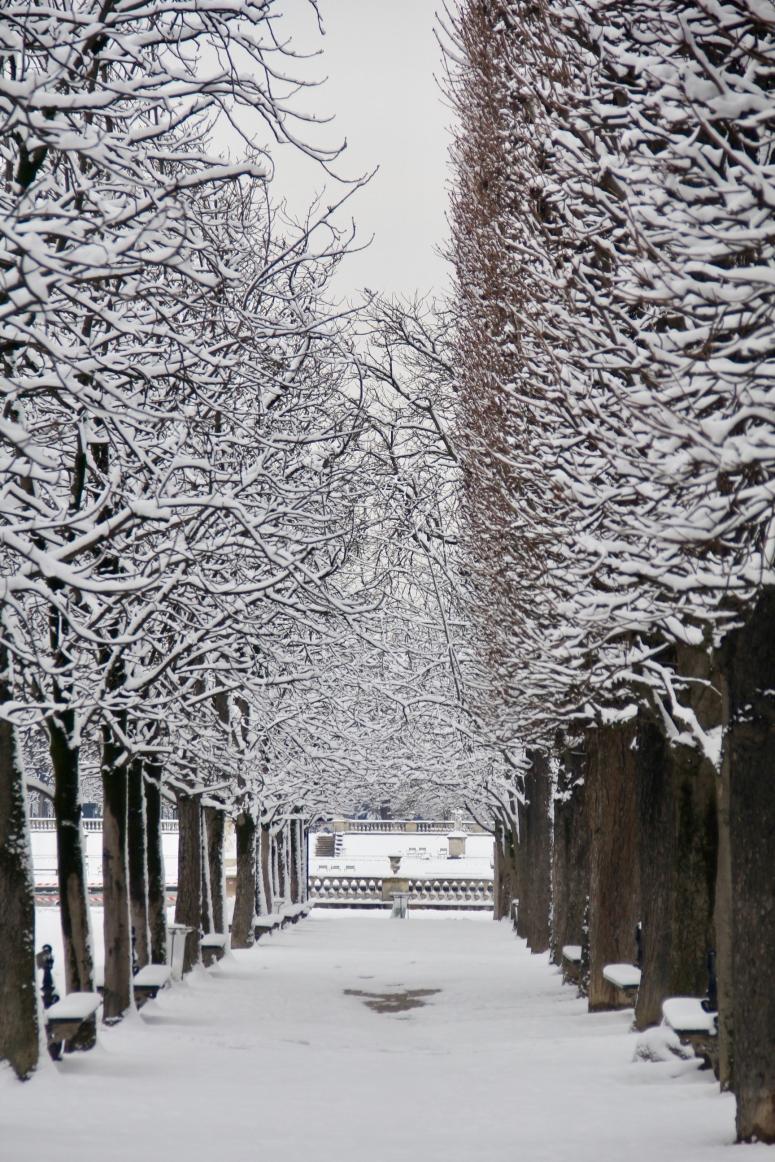 Snowy Paris - 41