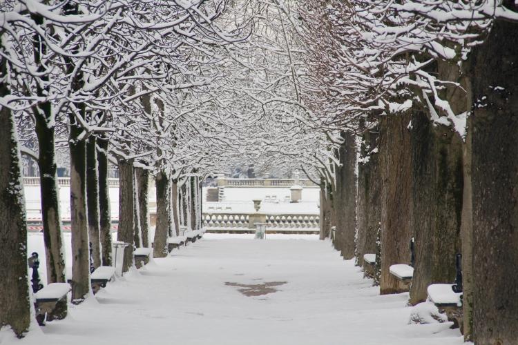 Snowy Paris - 42