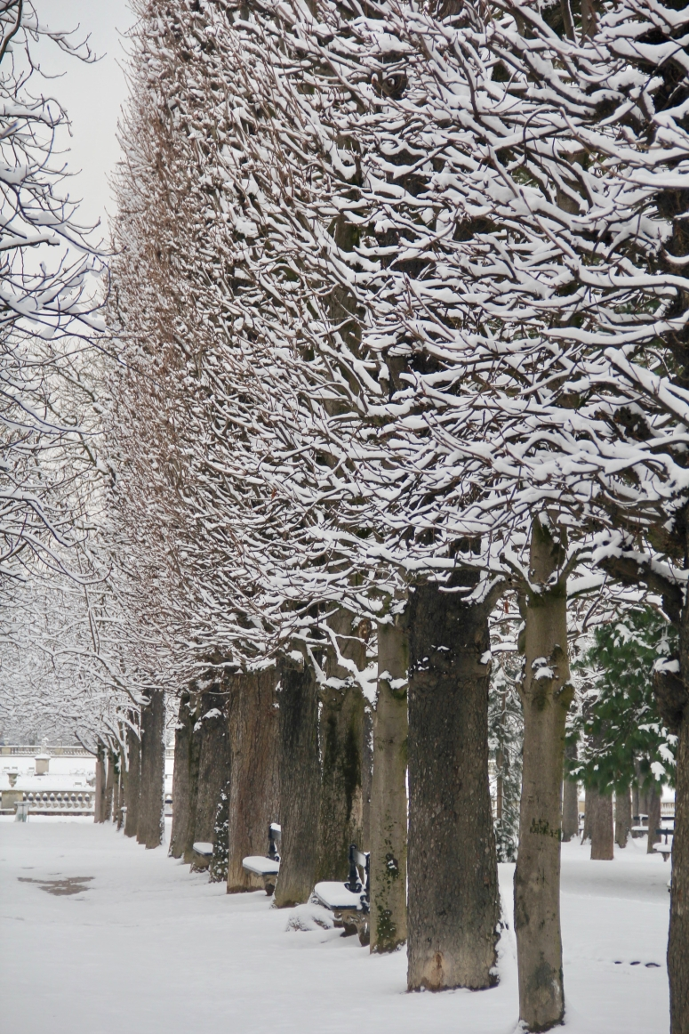 Snowy Paris - 43