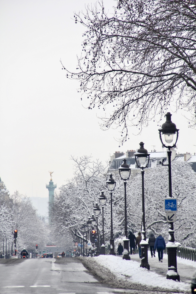 Snowy Paris - 9