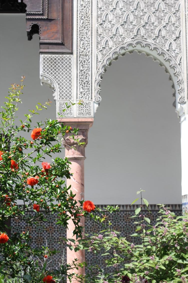 Grand Mosque of Paris - 9