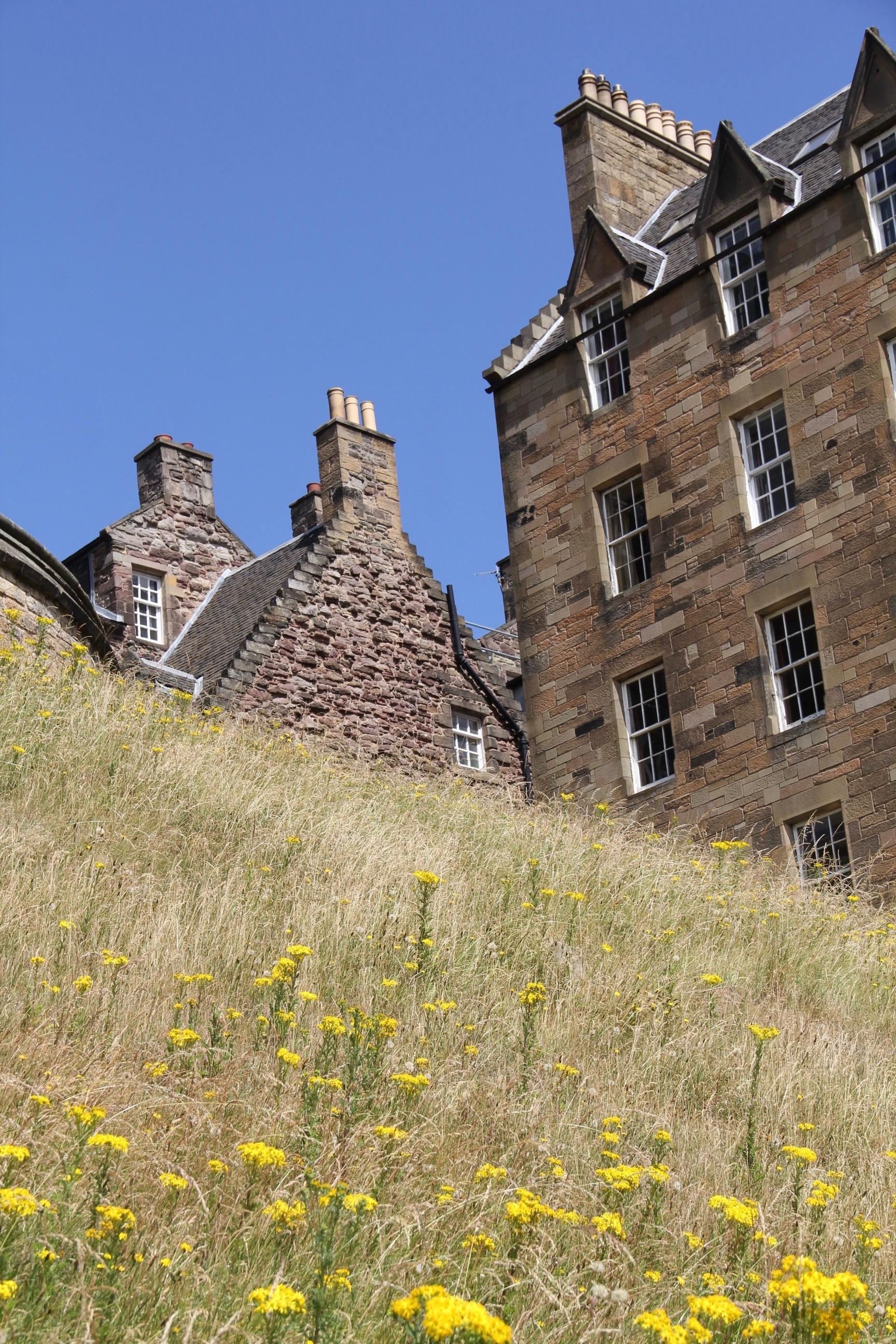 Scotland - 15