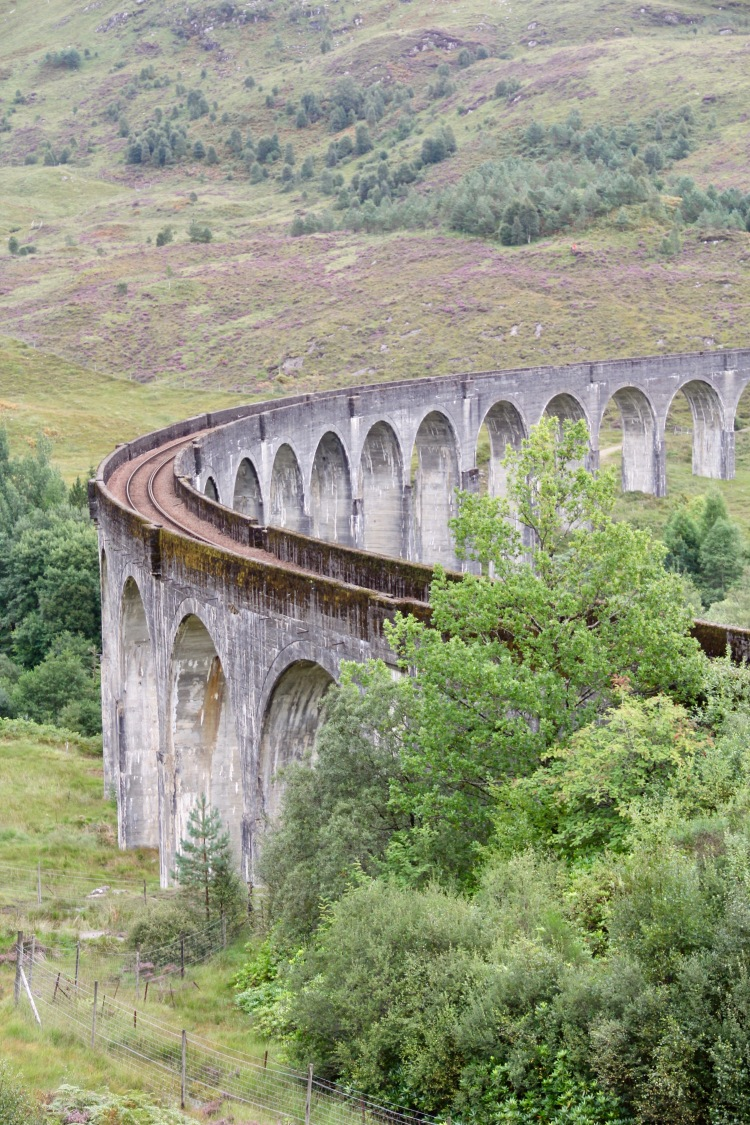 Scotland - 43